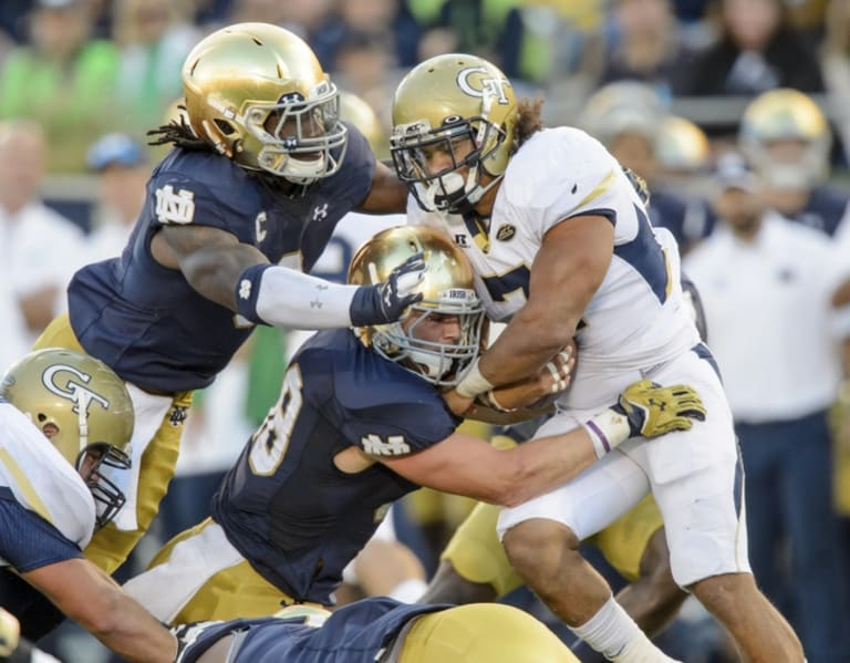 Notre Dame Fighting Irish Georgia Tech Yellow Jackets Establishment Versus Rebuild
