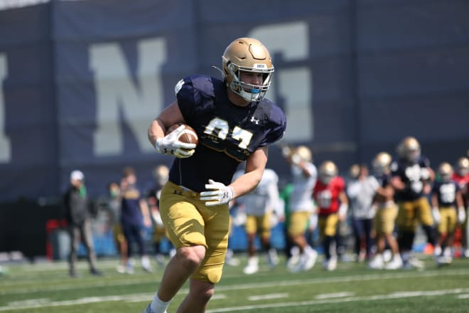 Notre Dame Fighting Irish football sophomore tight end Michael Mayer
