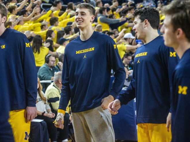 Michigan Wolverines basketball guard Franz Wagner